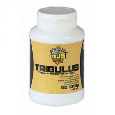 Tribulus Трибулус 90% сапонинов 500 мг, 90 капсул, Zeus Nutrition в Кызылорде